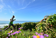 MOSSEL BAY, SOUTH AFRICA - SEPTEMBER 24: a runner runs next to the beach during the PetroSA Marathon finishing at Santos Caravan Park on September 24, 2016 in Mossel Bay, South Africa. (Photo by Roger Sedres/Gallo Images)