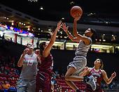 UNM Women's Basketball vs Fairleigh Dickinson 11/12/2016