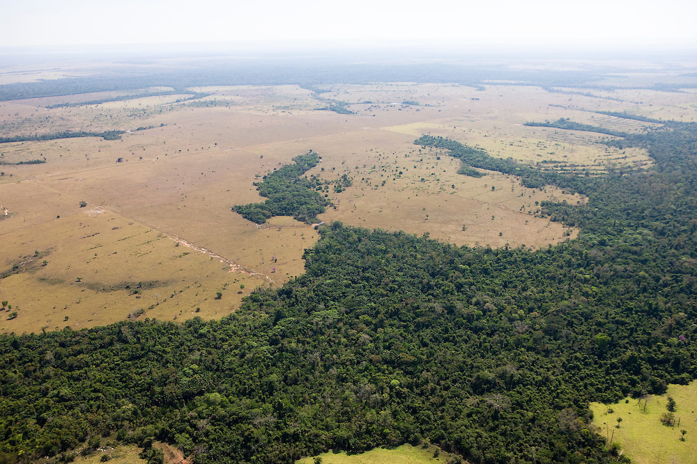 Fazenda Araputanga (cattle ranch) in Mato Grosso, Brazil, August 9, 2008..Daniel Beltra/Greenpeace