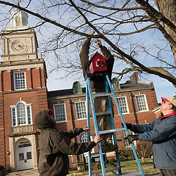 APSU staff hang a birdhouse on campus as it is named a national wildlife habitat.