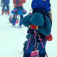 USA, Alaska, (MR) Climbing expedition stands exhausted in blizzard on West Buttress Route up Mount McKinley