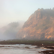 Otter Crest (right) and Cape Foulweather are shrouded in fog as gulls search for food at the edge of the Pacific Ocean on the central Oregon coast.