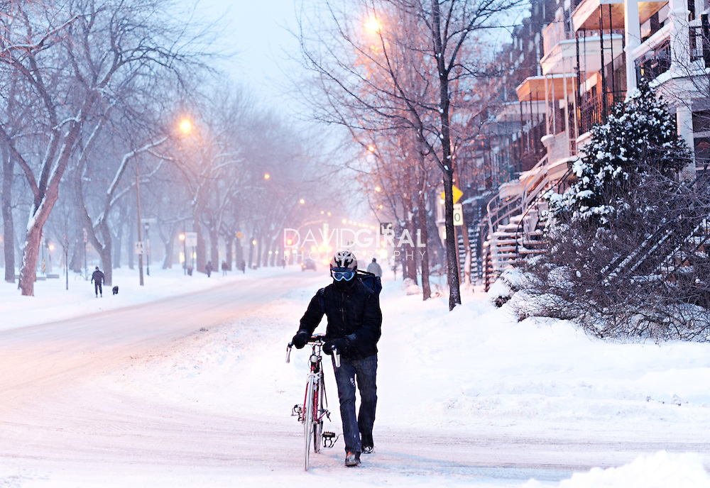 Editorial Travel Photography, Cyclist walking in snow storm on laurier avenue, plateau Mont Royal, Montreal, Quebec, Canada