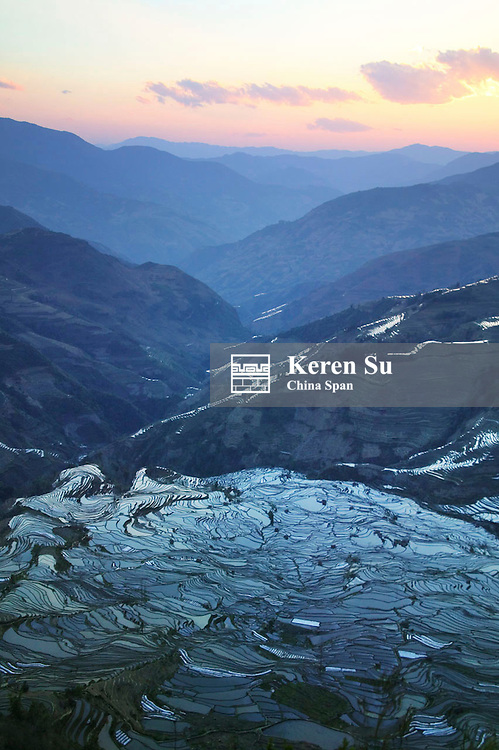 Water filled rice terraces in the mountain at sunset, Yuanyang, Yunnan Province, China