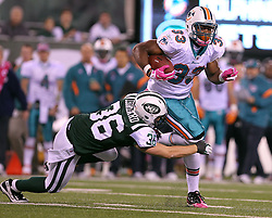 October 17, 2011; East Rutherford, NJ, USA; New York Jets safety Jim Leonhard (36) tackles Miami Dolphins running back Daniel Thomas (33) during the first half at the New Meadowlands Stadium.