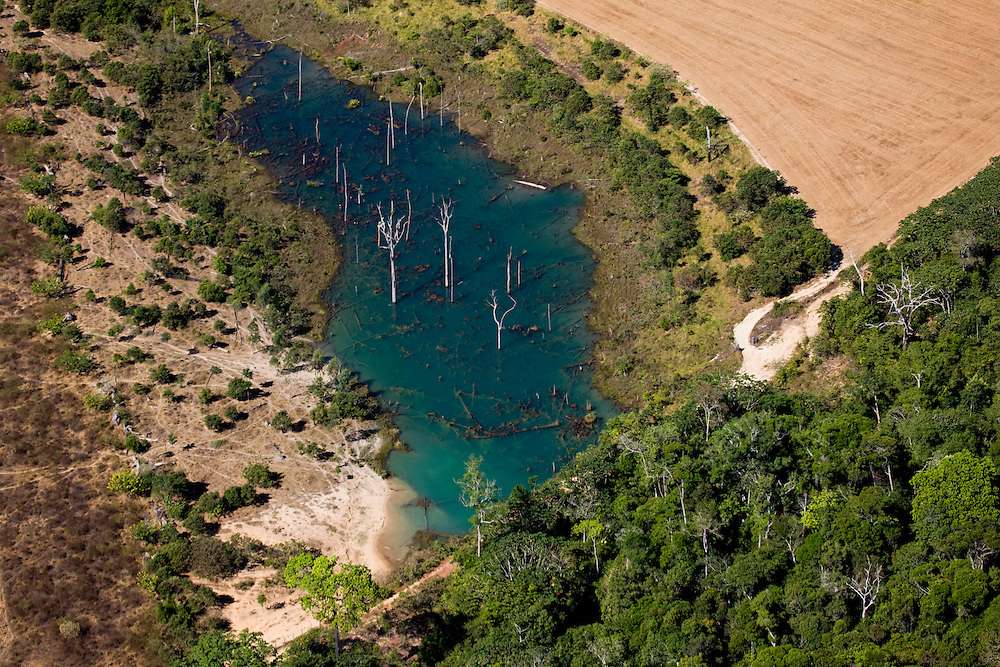 A watering pond for cattle, as seen from the air, created from the daming of a stream on a ranch in Mato Grosso, Brazil, August 6, 2008. Daniel Beltra/Greenpeace