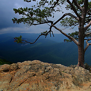 &quot;Darkness on Ravens Roost&quot;<br /> <br /> A storm approaches Ravens Roost Overlook in the blue Ridge Mountains of Virginia! The lone pine tree stands as a sentinel on the rock formations!