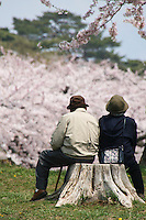 Hanami is the Japanese traditional custom of enjoying the beauty of flowers, in this case almost always meaning cherry blossoms. This elderly Japanese couple is still out there enjoying the cherry blossoms after, presumably, many years.