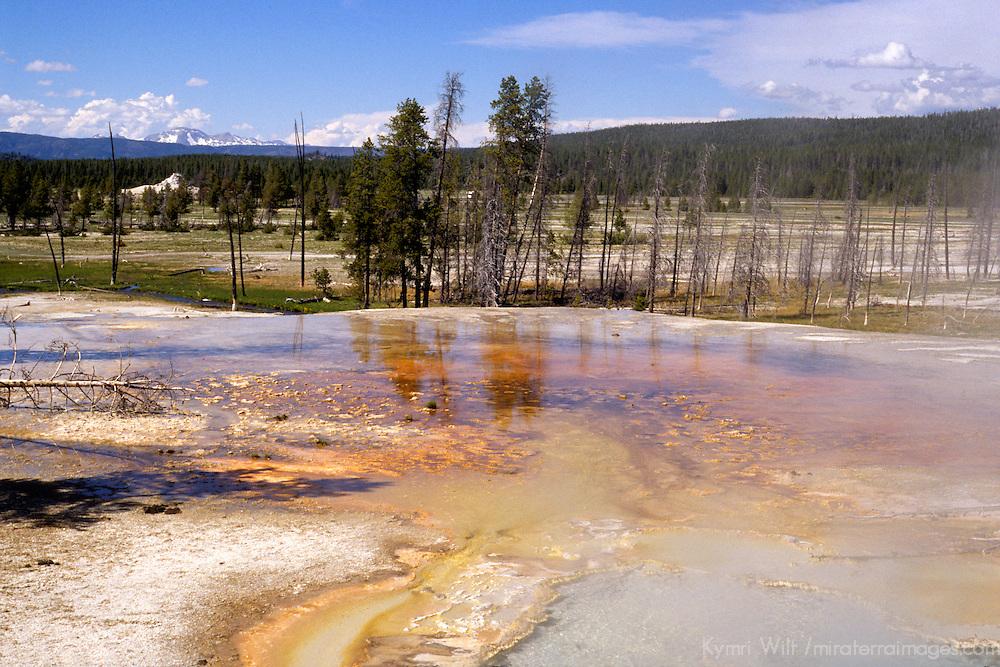 North America, USA, United States, Wyoming, Yellowstone. Geothermal landscape of geyser basin.