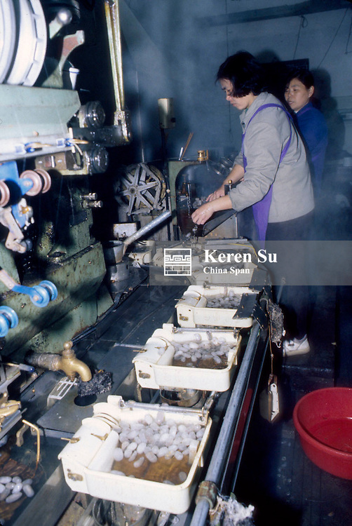Drawing silk threads from silk cocoons in the boiling water at the silk factory, Hangzhou, Zhejiang Province, China