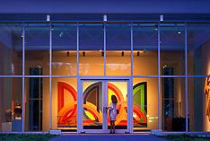 Arts in Houston