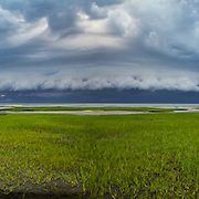A shelf cloud races ahead of an approaching storm at Paine's Creek Beach in Brewster.