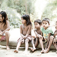 Batak children sit on a log in a village in the forests of Palawan, the Philippines