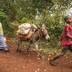 Farmers carry coffee to sell in the Limu region of Ethiopia.