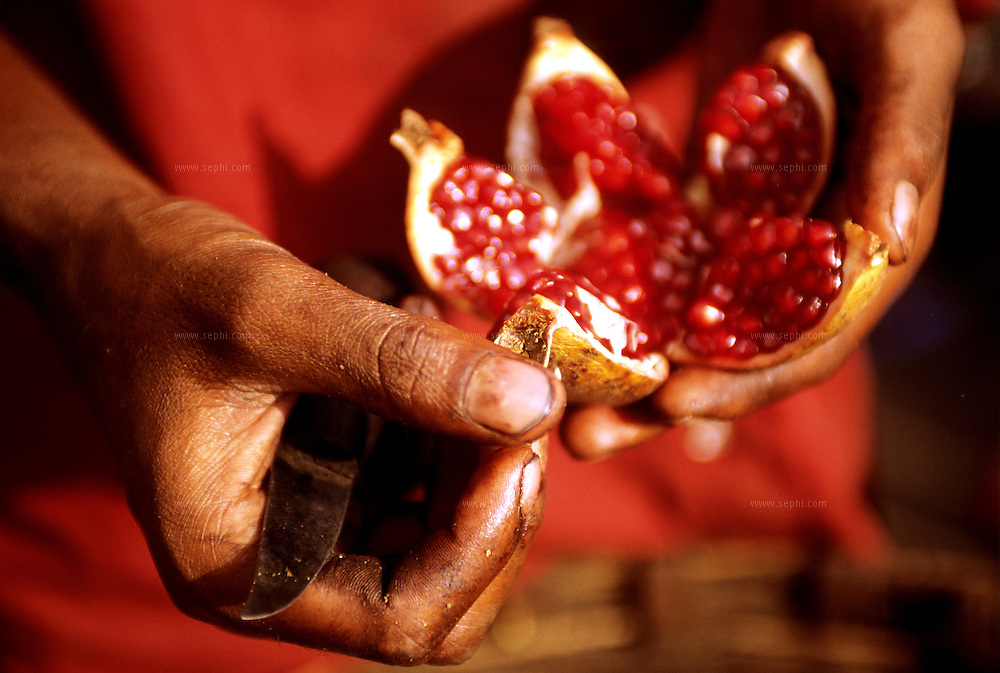 A Pomegranate vendor on the streets of Hyderabad (AP) showing the quality of his fruits .