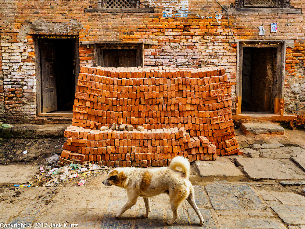 01 MARCH 2017 - KHOKANA, NEPAL: A street dog walks by a stack of bricks that will be used to rebuild homes destroyed in the 2015 earthquake in Nepal. Recovery seems to have barely begun nearly two years after the earthquake of 25 April 2015 that devastated Nepal. In some villages in the Kathmandu valley workers are working by hand to remove ruble and dig out destroyed buildings. About 9,000 people were killed and another 22,000 injured by the earthquake. The epicenter of the earthquake was east of the Gorka district.     PHOTO BY JACK KURTZ