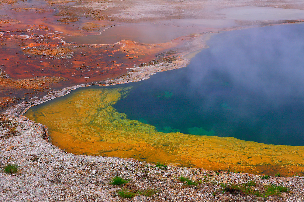 Yellowstone Lake Thermal Pool Cyanobacteria Color - Yellowstone National Park