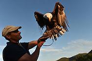 27/07/16 - SAINT OURS LES ROCHES - PUY DE DOME - FRANCE - Soiree de l ete a Vulcania - Photo Jerome CHABANNE