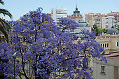 Tourism Malaga Spain