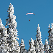 A paraglider takes advantage of a perfect day to soar high above Hurricane Ridge in Olympic National Park.