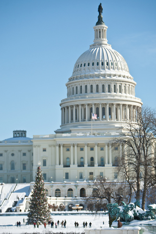 The Capitol during Snowpocalypse 2010.