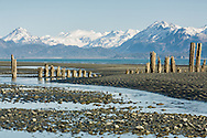 Old dock pilings at low tide in Kachemak Bay along the Homer Spit in Homer in Southcentral Alaska. Spring. Evening.