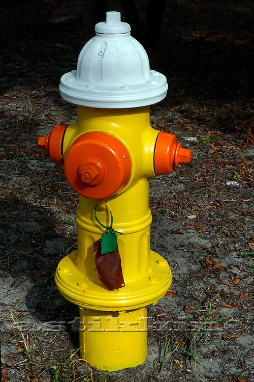 Hydrant yellow and red.