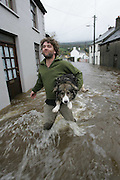 29/10/2004.RAy Whelan pictured rescuing Benny the dog on Old Bridge Street in Clonmel yesterday.Pictture Dylan Vaughan
