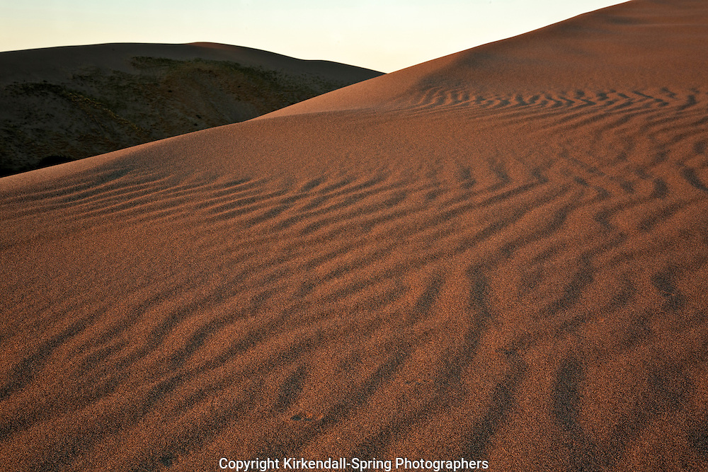 ID00652-00...IDAHO - Early morning on the sand at Bruneau Dunes State Park.
