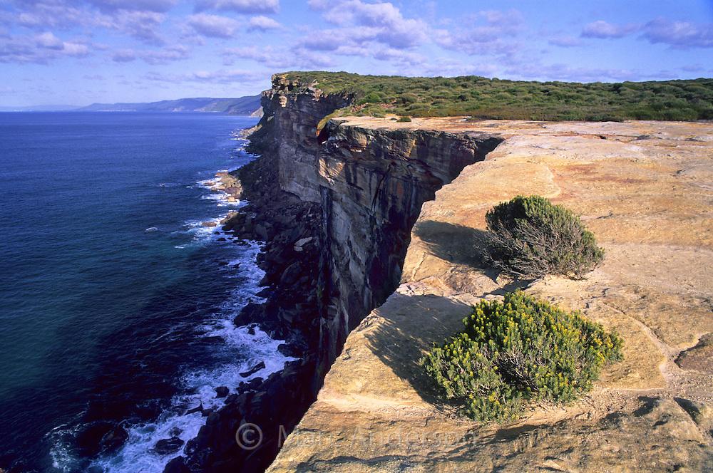 Sandstone cliffs on the coast of the Royal National Park, Australia.