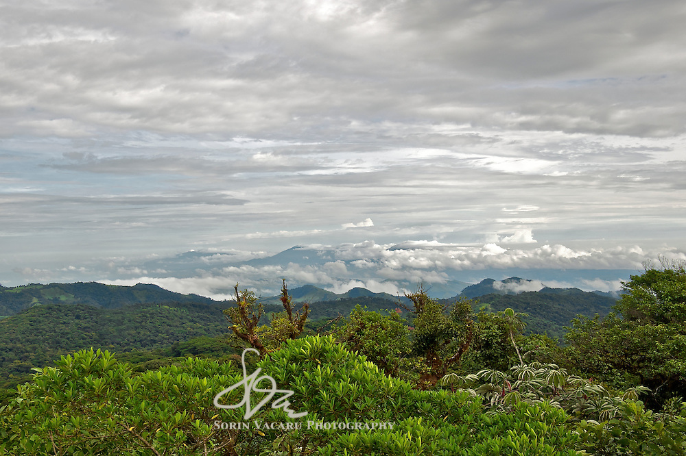 View of the Monteverde Cloud Forest From Santa Elena