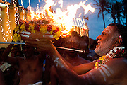 Sri Lanka. On the dawn of the day of the fire walking, the Chief Priest, carries the sacred flame which will light the wood for the fire walking that night. Festival at Udappu village.