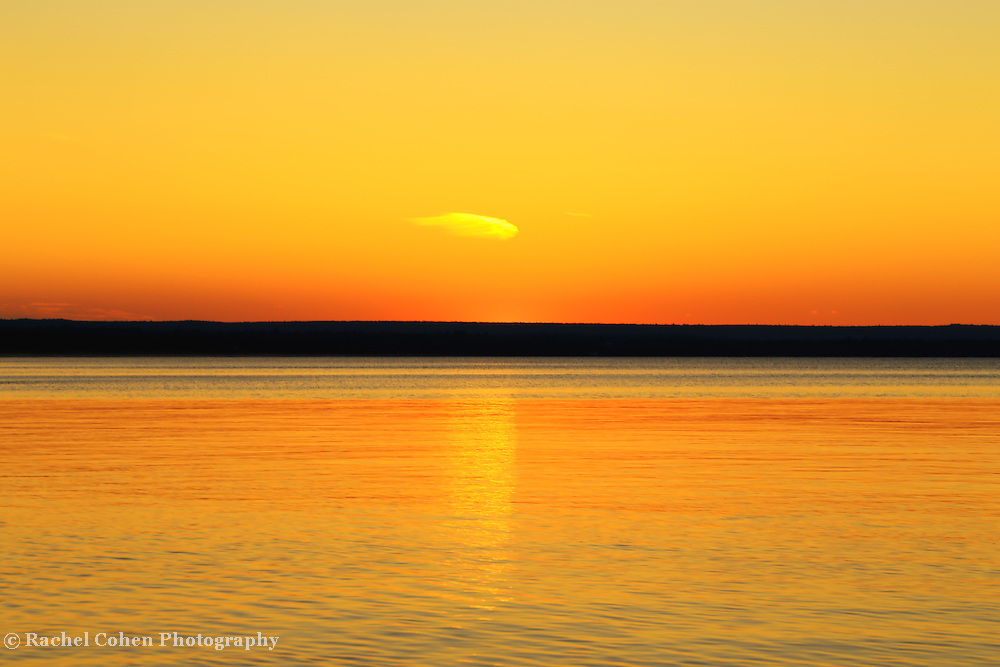 &quot;Sunset's Desire&quot;<br /> <br /> Golden sunset and silhouette!!<br /> <br /> Sunset Images by Rachel Cohen