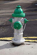 Hydrant on white and green.