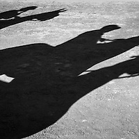 Shadows of the horse before an early morning thest race
