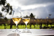 Amber Wine @ Cullen wines. Margaret River