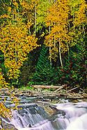 Yaak Falls & forest in fall. Yaak Valley, northwest Montana.