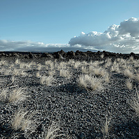 Black volcanic stone and brush on the big island of Hawaii.  Late day clouds and setting sun on the horizon.