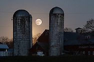 Montgomery, New York - The full moon rises behind silos at Pleasant View Farm on Nov. 25, 2015.