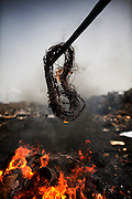Burning cables from computers and other electronic equipment to retrieve copper, at Agbogbloshie dump, in Accra, Ghana. Combustion releases toxic metals such as lead, beryllium, cadmium and mercury into the atmosphere.