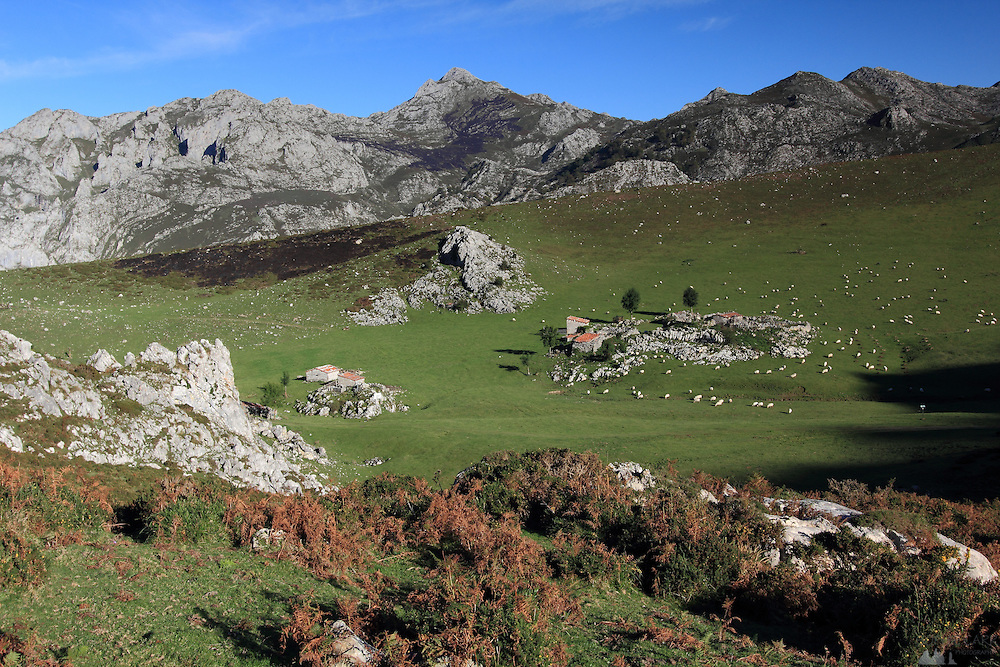Hiking above Majada de Belbin, a tiny hamlet where they make cheese, in the Picos de Europa