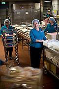 Westmead Children's Hospital Review Portraits. Froska Kolaroska Food Services.