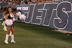 Aug 26, 2012; East Rutherford, NJ, USA; Members of the New York Jets Flight Team cheer during the second half of their game against the Carolina Panthers at MetLife Stadium. The Panthers defeated the Jets 17-12.