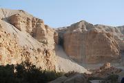 Israel, Judea Desert, Einot Zokim a blooming desert oasis on the shore of the Dead Sea.