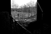 Dave Bircher, 71, does chores on his farm in Guysville, OH on November 13, 2007. Bircher has farmed the rolling hills of Southeast Ohio for more than thirty years.