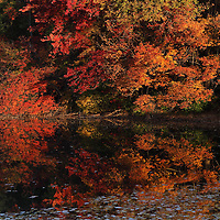 The New England fall foliage attracts leaf peepers from around the world. Locals and travelers from far away flock to Maine, New Hampshire, Vermont, Massachusetts, Connecticut and Rhode Island to get a glimpse of the colorful display of trees. Leaf peeping is an annual New England must do and personally I look forward to it all year. Early morning, when the sun paints the fall foliage in warm hues, is my preferred time to explore magic of nature. Nearby Southborough in Worcester County with it&rsquo;s beautiful lakes makes for quick outings and beautiful viewing of colorful fall foliage. Last week autumn colors were peaking which made for a perfect autumn scenery and fall foliage reflection.  <br />
