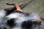 Waves from Lake Washington crash into pieces of driftwood along the undeveloped shoreline of Saint Edward State Park in Kenmore, Washington.