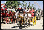 14: ANDALUSIA SEVILLE FAIR HORSES