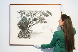 Christies, St James, London, March 4th 2016. A gallery assistant straightens David Hockney's &quot;Kilham to Rudston&quot;, charcoal on paper from 2008 at the preview for the It&rsquo;s Our World charity auction at Christie's. Over 40 leading artists including David Hockney, Sir Antony Gormley, David Nash, Sir Peter Blake, Yinka Shonibare, Sir Quentin Blake, Emily Young and Maggi Hambling have committed artworks to the It&rsquo;s Our World Auction in support of The Big Draw and Jupiter Artland Foundation, to be sold at Christie&rsquo;s London on 10 March 2016.<br />  ///FOR LICENCING CONTACT: paul@pauldaveycreative.co.uk TEL:+44 (0) 7966 016 296 or +44 (0) 20 8969 6875. &copy;2015 Paul R Davey. All rights reserved.