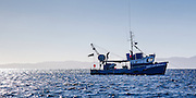 Fishing trawler Sonya Maria, at anchor in Hooks Bay, Waiheke Island.  Early morning, with Coromandel Peninsular in the distance.
